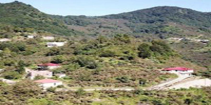 Görele Boğalı Köyü Resimleri