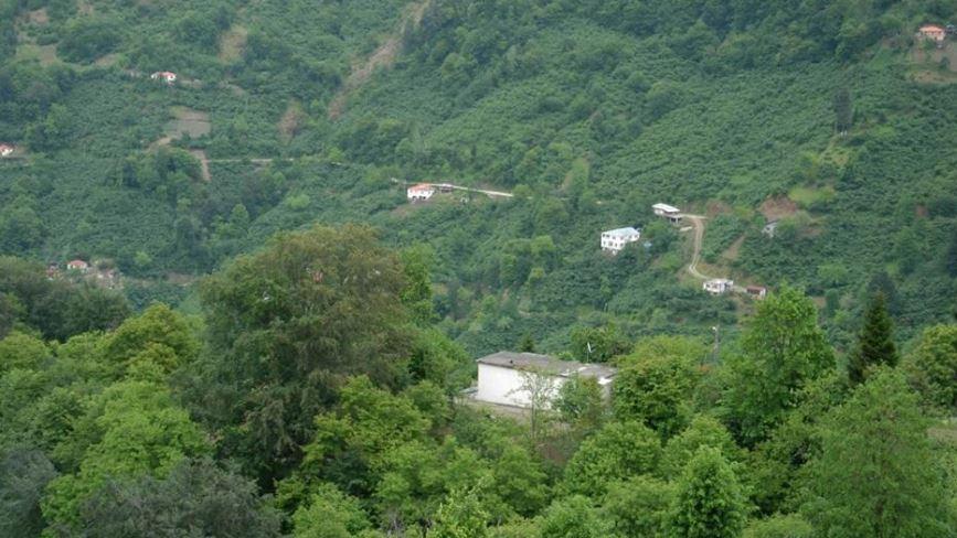 Beşikdüzü Ardıçatak Köyü Resimleri 1