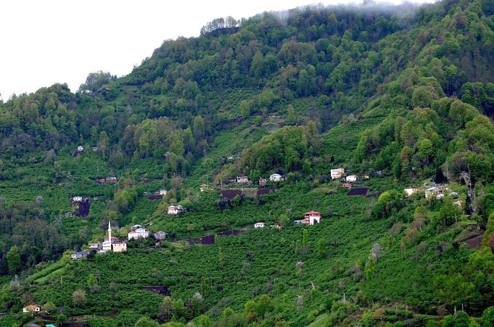 Beşikdüzü Bozlu Köyü Resimleri 1