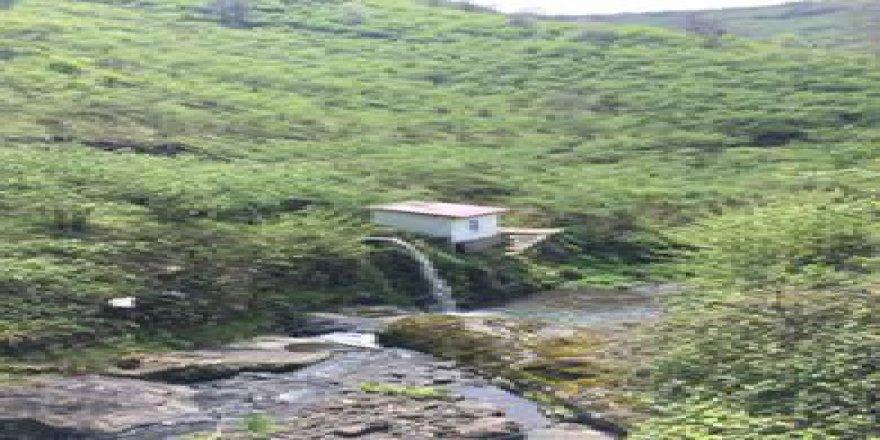 Görele Dereboyu Köyü Resimleri