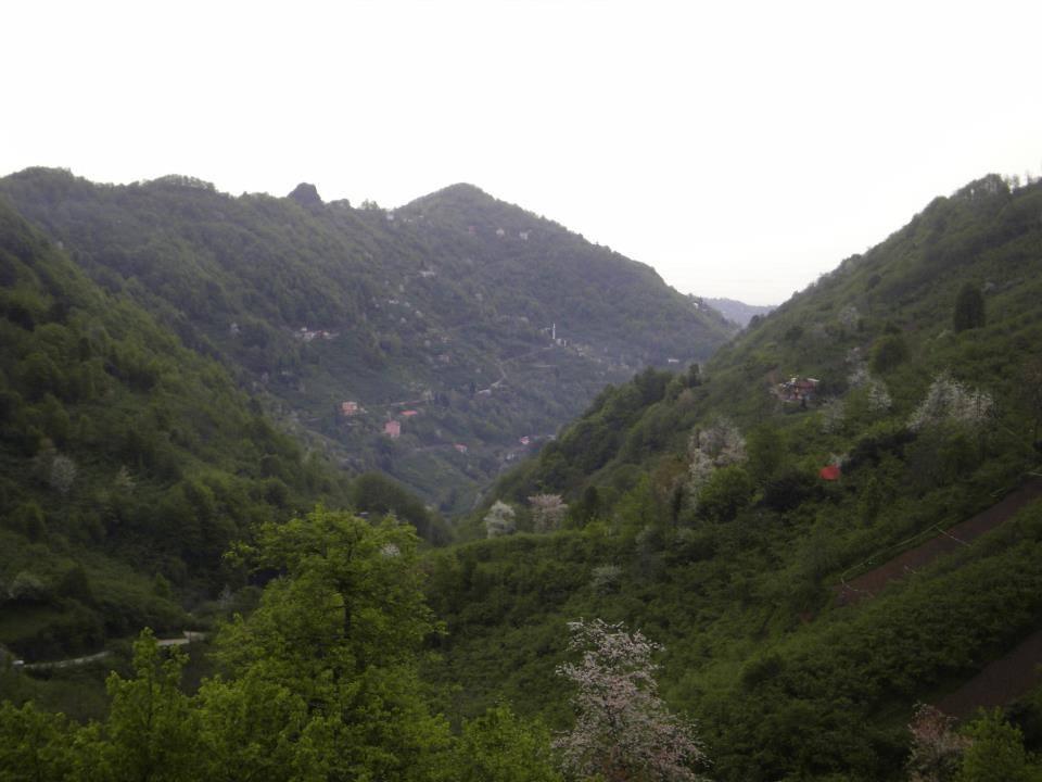 Beşikdüzü Kalegüney Köyü Resimleri 1