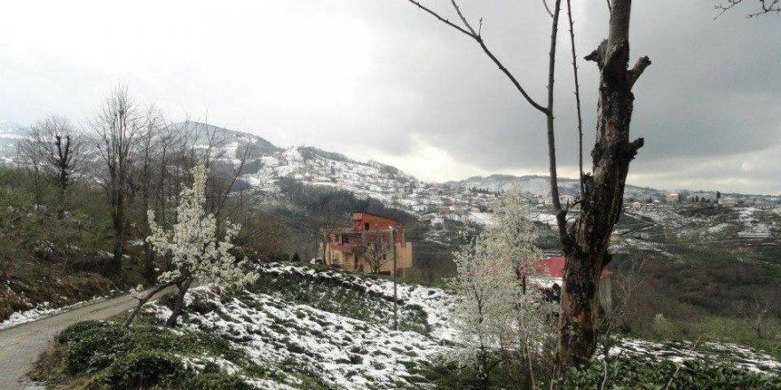 Beşikdüzü Oğuz Köyü Resimleri
