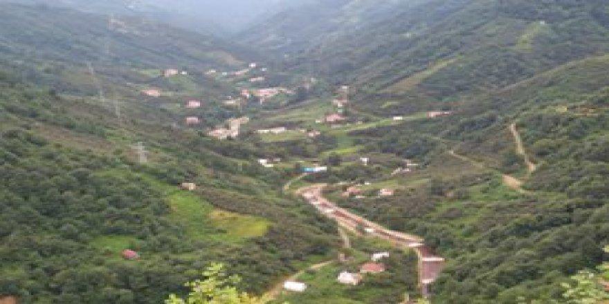 Görele Soğukpınar Köyü Resimleri