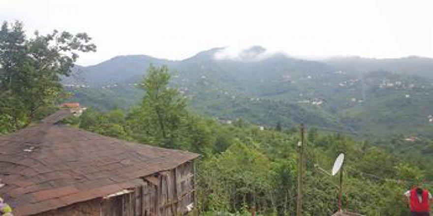 Görele Şahinyuva Köyü Resimleri