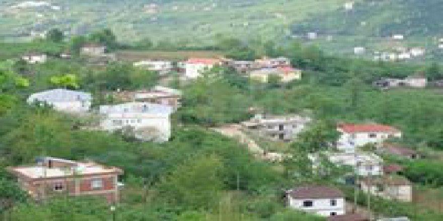Güce Örnekköy Köyü  Resimleri