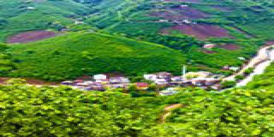 Güce Yukarıboynuyoğun Köyü Resimleri
