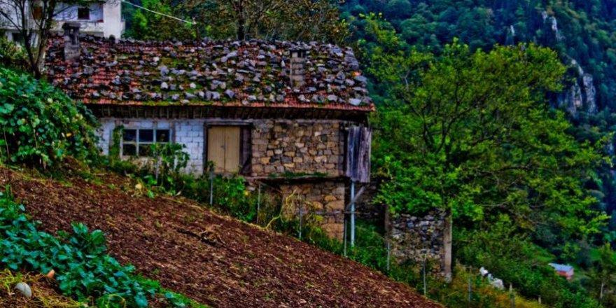 Çaykara Çambaşı Köyü Resimleri