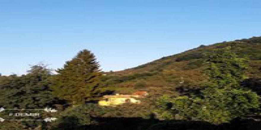 Keşap Kayabaşı Köyü Resimleri