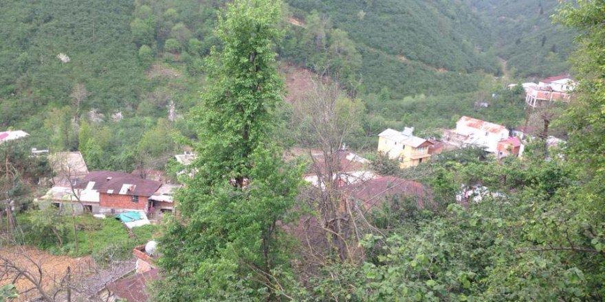 Keşap Küçükgeriş Köyü Resimleri
