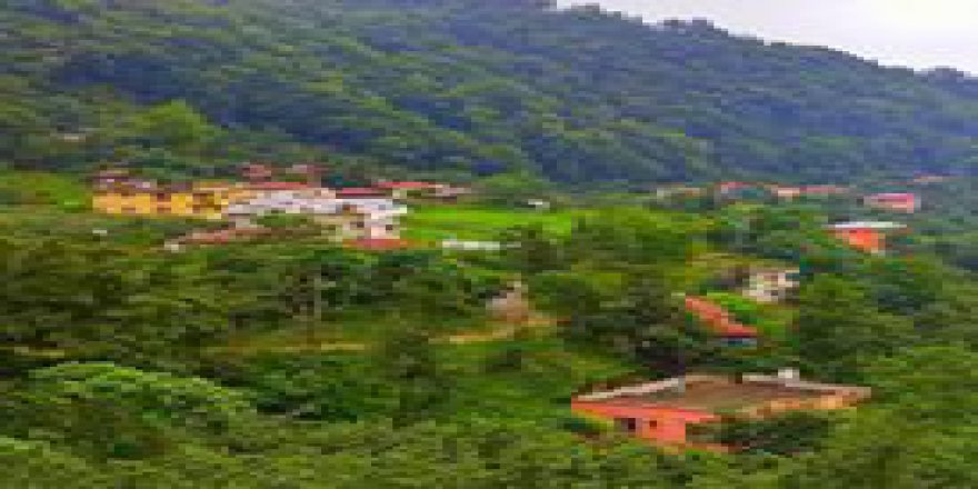 Keşap Sayca Köyü Resimleri