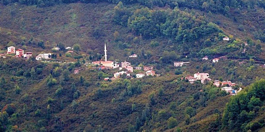 Keşap Taflancık Köyü Resimleri