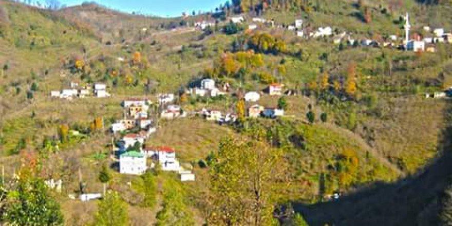 Keşap Yolbaşı Köyü Resimleri