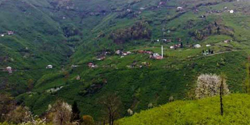 Piraziz Bozat Köyü Resimleri