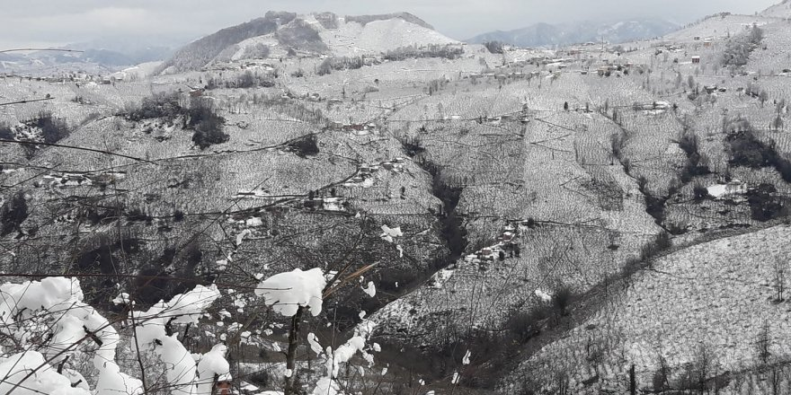 Piraziz Alidede Köyü Resimleri