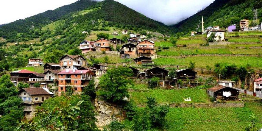 Çaykara Köknar Köyü Resimleri