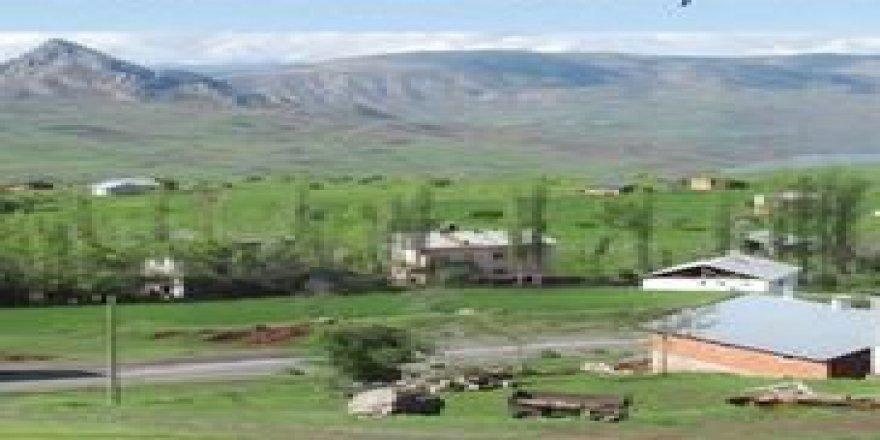 Şebinkarahisar Saraycık Köyü Resimleri