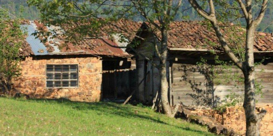 Çaykara Şahinkaya Köyü Resimleri