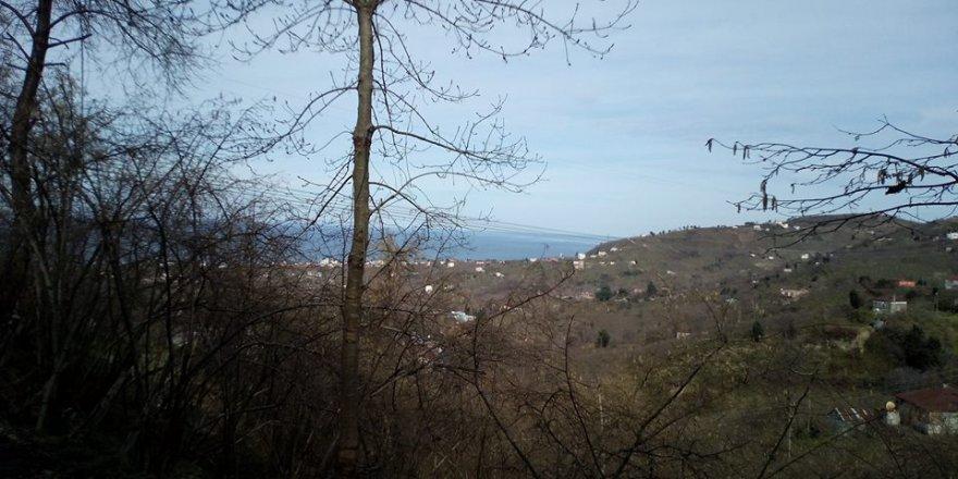 Tirebolu Düzköy Köyü Resimleri