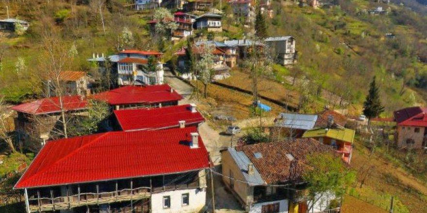 Çaykara Taşören Köyü Resimleri