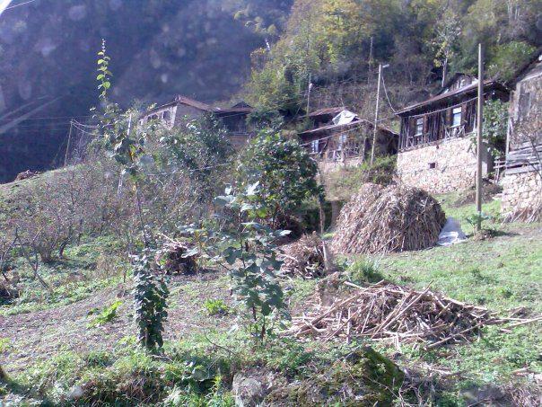 Tirebolu Ergenekon Köyü Resimleri 1