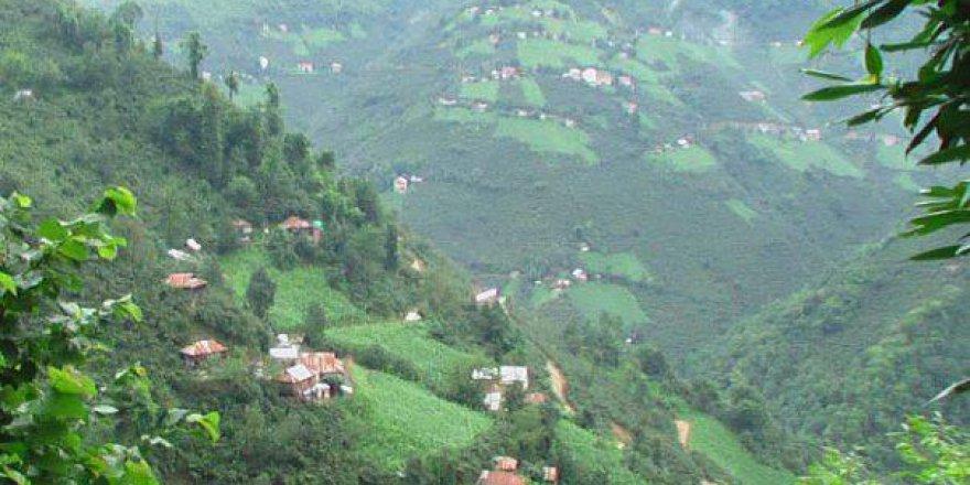 Tirebolu Ergenekon Köyü Resimleri
