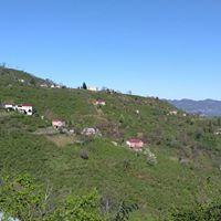 Tirebolu Fatih Köyü Resimleri 1