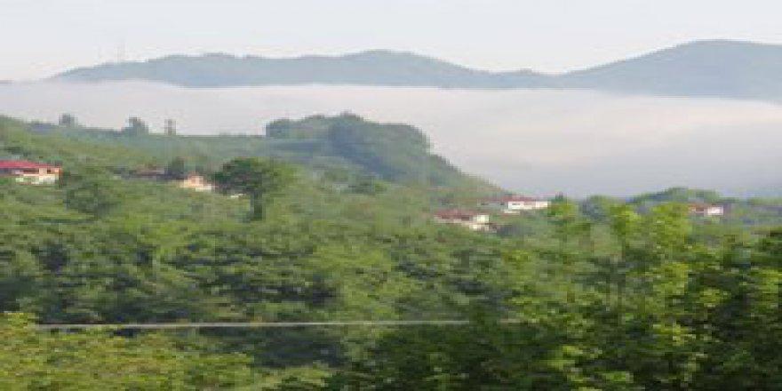 Tirebolu Işıklı Köyü Resimleri