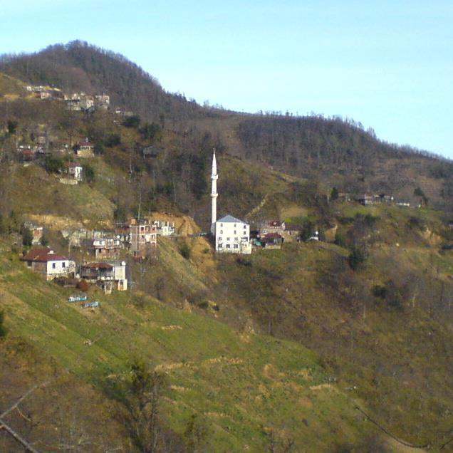 Tirebolu Kayalar Köyü Resimleri 1