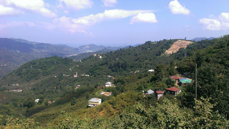 Tirebolu Kovancık Köyü Resimleri 1