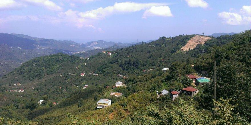 Tirebolu Kovancık Köyü Resimleri