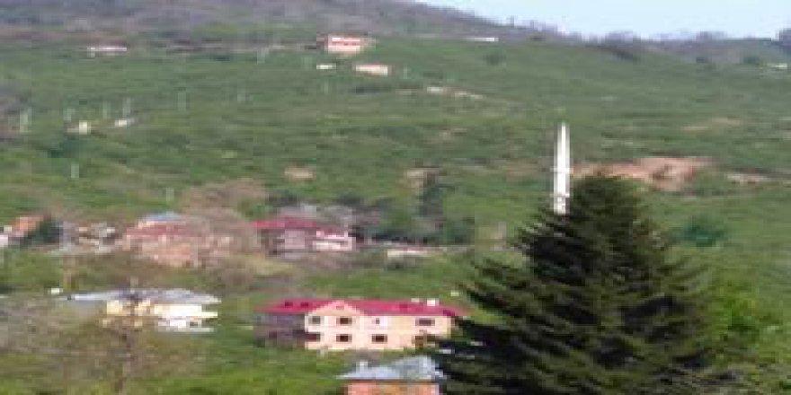 Tirebolu Kuskunlu Köyü Resimleri