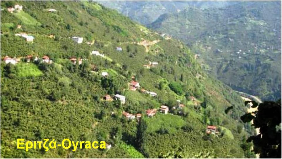 Tirebolu Oyraca Köyü Resimleri 1