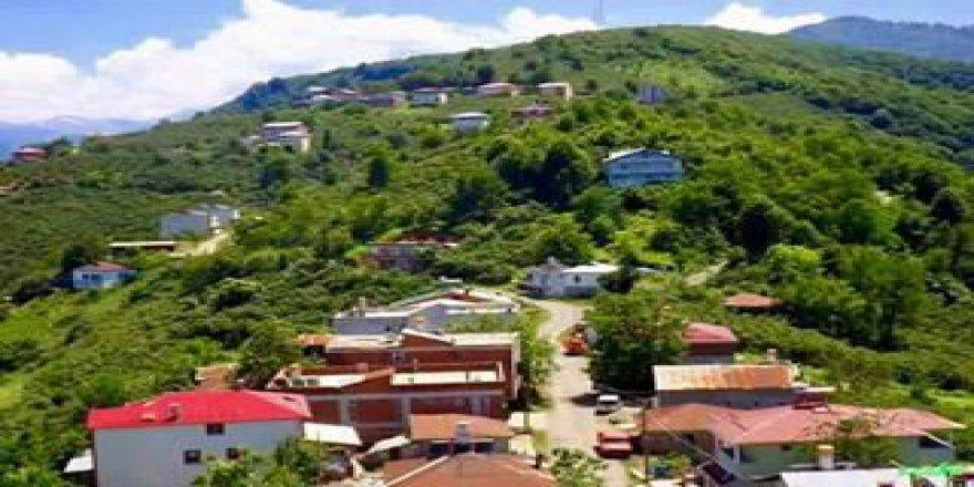 Yağlıdere Elmabelen Köyü Resimleri