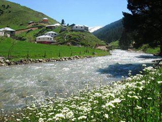 Yağlıdere Güllüce Köyü Resimleri 1