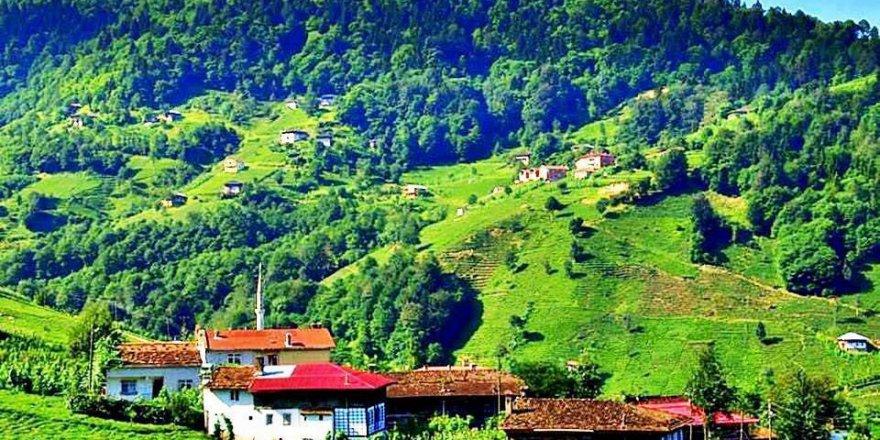 Dernekpazarı Akköse Köyü Resimleri