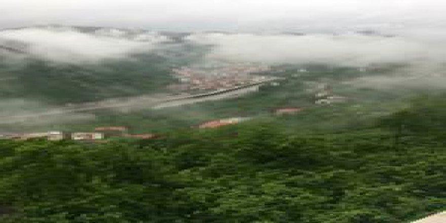 Yağlıdere Kanlıca Köyü Resimleri