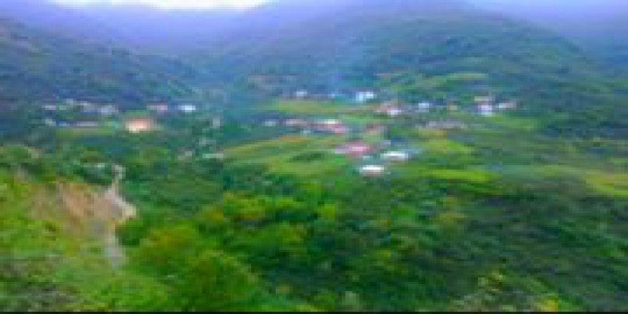Yağlıdere Tuğlacık Köyü Resimleri