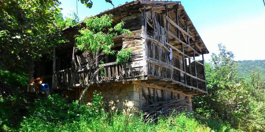 Dernekpazarı Çayırbaşı Köyü Resimleri