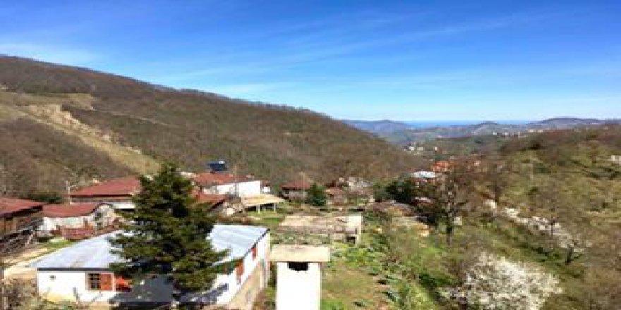 Yağlıdere Yazlık Köyü Resimleri