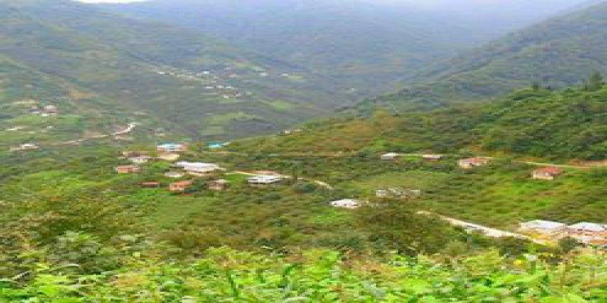 Yağlıdere Yeşilyurt Köyü Resimleri