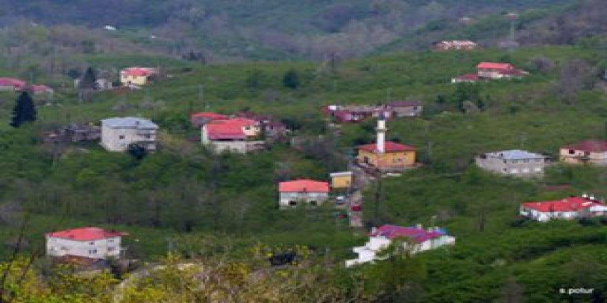 Giresun Camili Köyü Resimleri