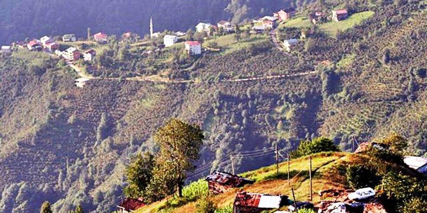Dernekpazarı Günebakan Köyü Resimleri