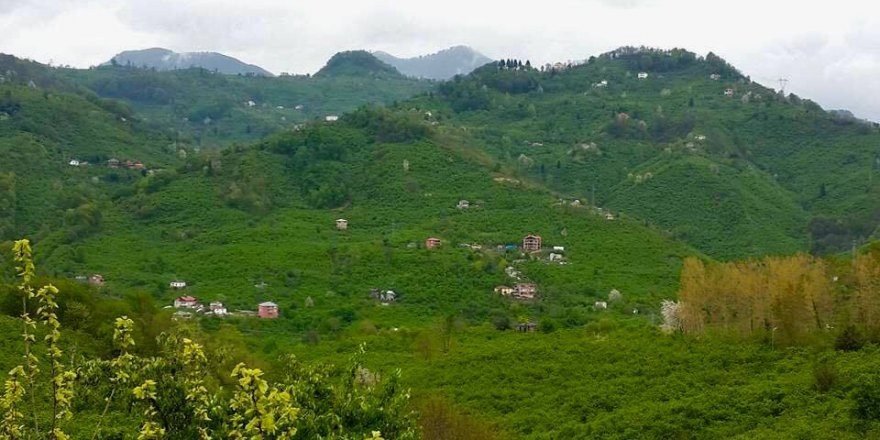 Giresun Çaykara Köyü Resimleri