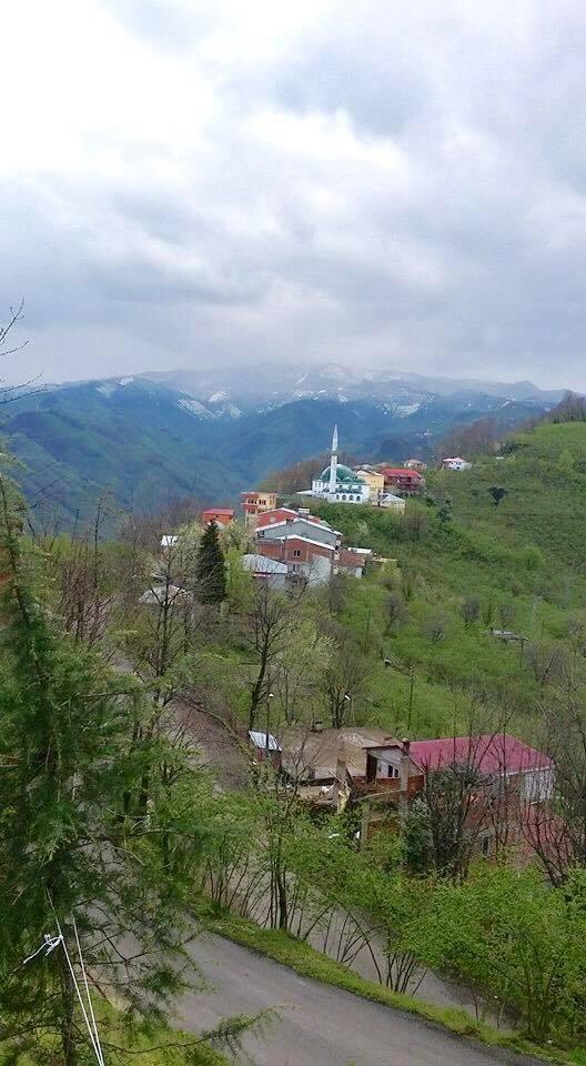 Giresun Darıköy Köyü Resimleri 1