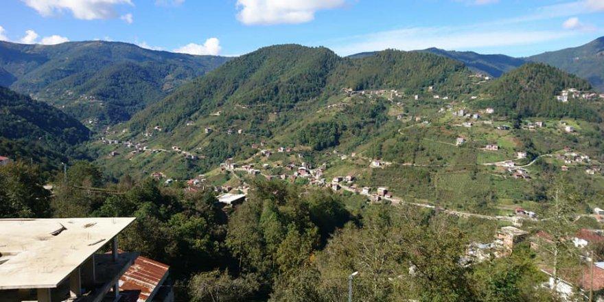 Dernekpazarı Ormancık Köyü Resimleri