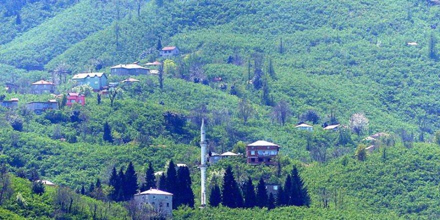 Giresun Gürköy Köyü Resimleri