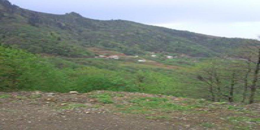 Giresun Karaali Köyü Resimleri