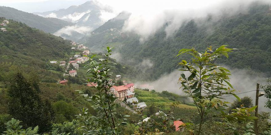 Dernekpazarı Taşçılar Köyü Resimleri