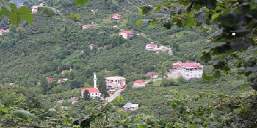 Giresun Orhaniye Köyü Resimleri