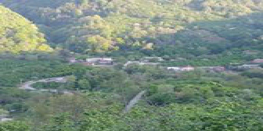 Akçakoca Kurugöl Köyü Resimleri